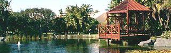 Woodbridge Island Koi Pond